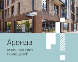 Аренда коммерческих помещений в «Новоостровском»
